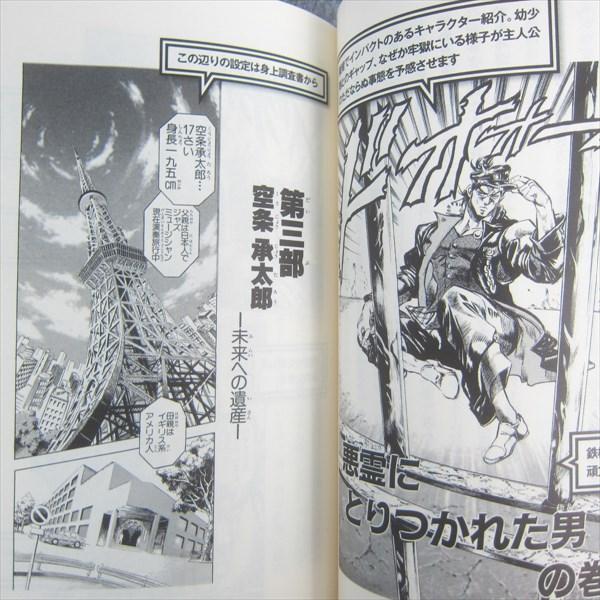 manga essay