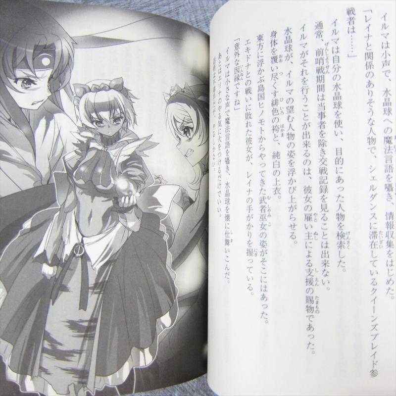 Queen/'s Blade Gekitou JAPAN Queen/'s Blade novel