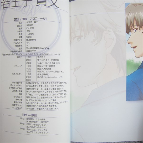 TOKIMEKI MEMORIAL GS2 Celebrate Encounter VII 7 TAKAFUMI WAKAOJI Art Book
